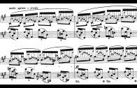 Chopin-24-Preludes-Op.28-Blechacz