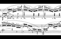 Chopin-Etudes-Op.10-and-Op.25-Fialkowska